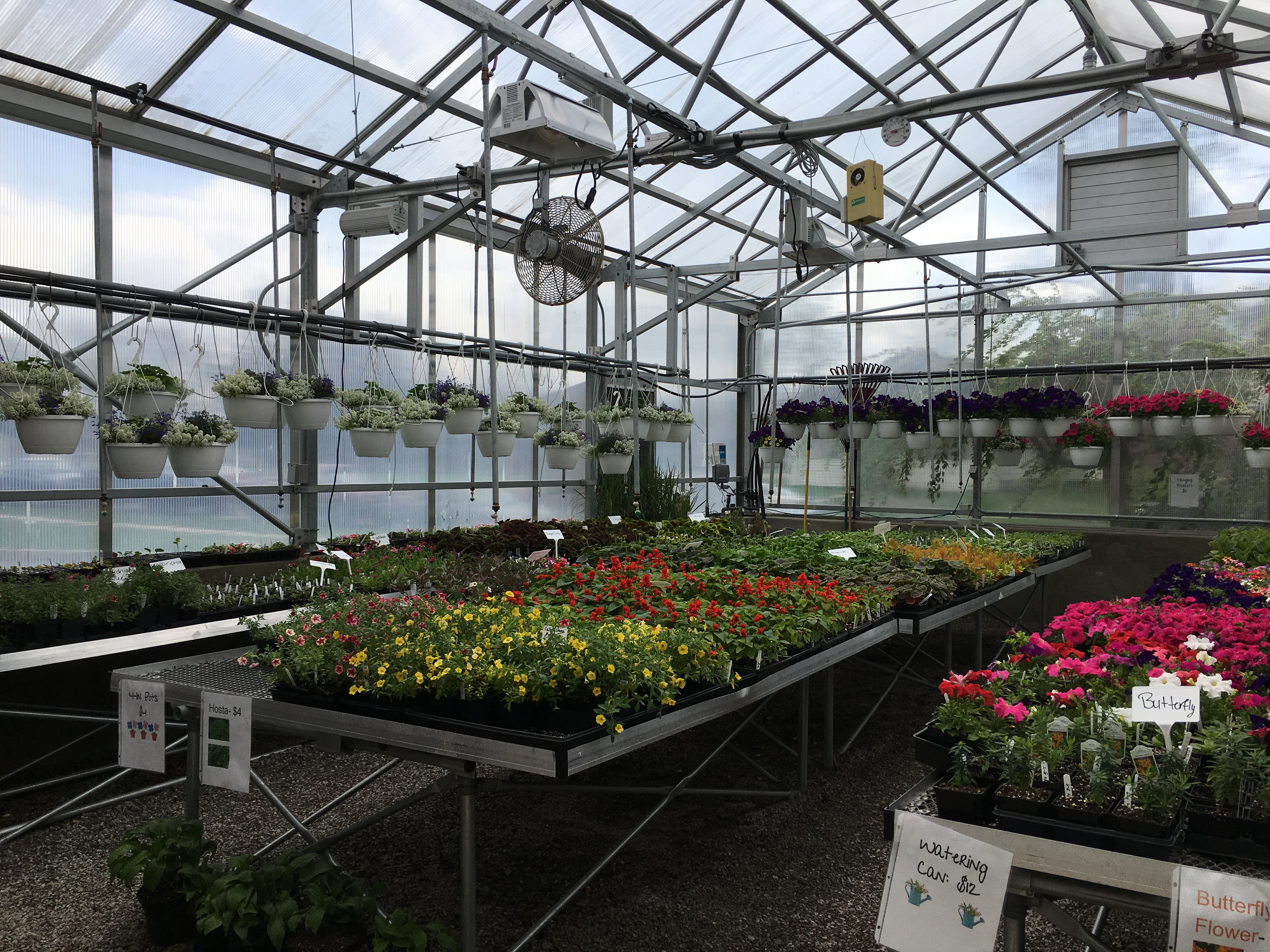 FFA Greenhouse Plant Sale